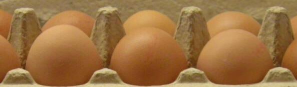 eieren van de boer
